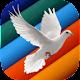 Turka Nouveau Testament Download for PC Windows 10/8/7