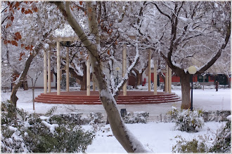 Photo: Jardín de la Glorieta. Almansa 