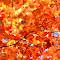 A Burst of Fall.jpg