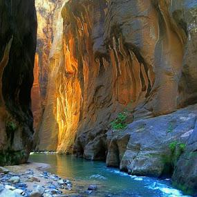 Flowing Sandstones by Blaine Cox - Landscapes Deserts (  )