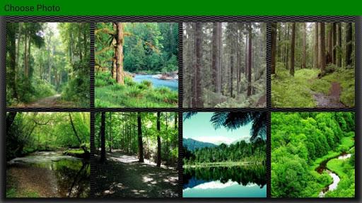 解謎必備免費app推薦|Forest Puzzles線上免付費app下載|3C達人阿輝的APP