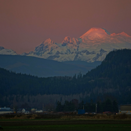 Mount Baker  by Todd Reynolds - Landscapes Mountains & Hills