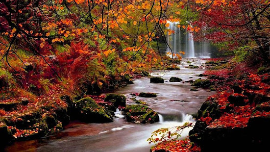 Autumn Wallpapers For Pc Windows 7 8 10 Mac Free Download Guide