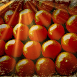 Oranges on Steroids by Dave Walters - Food & Drink Fruits & Vegetables ( colors, still life, digital art, artistic, oranges, lumix fz2500,  )