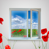Plastic Windows Wallpapers