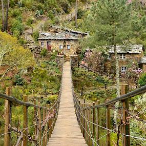 Foz d' Égua by Julio Cardoso - Buildings & Architecture Bridges & Suspended Structures ( aldeia de xisto, ponte suspensa, foz d' égua, portugal, arganil )