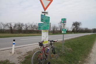 Photo: Značenie celého okruhu je celkom slušné, väčšinou po poľných cestách a po rovine som sa dostal na križovatku cyklociest južne od Bad-Deutsch-Altenburgu