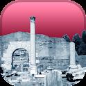Roman Forum Tour Guide