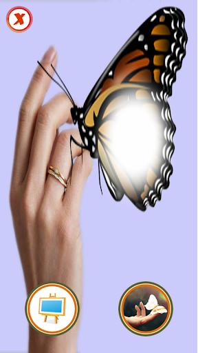 蝶フォトフレーム効果