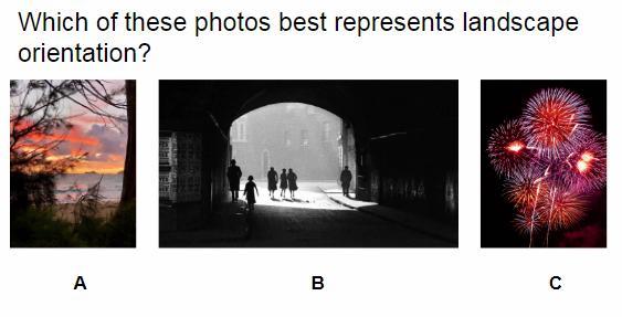 Captionless Image