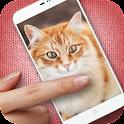 Pat the Kitty Simulator Pro icon