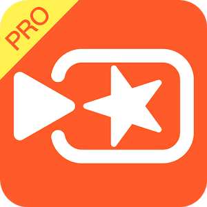 Image result for Vivavideo Pro.