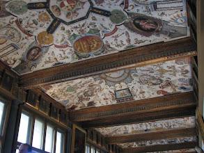 Photo: Even the Ufuzzi's ceilings were fabulous.
