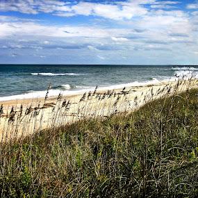 Beachy Keen by Aulander Skinner - Landscapes Beaches ( sand, grass, carolina, waves, ocean, beach )
