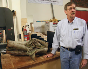 "Photo: Stephen Price brought in an ""interesting"" piece of red cedar to get some ideas on what's inside and how to get it out. He got some good suggestions."