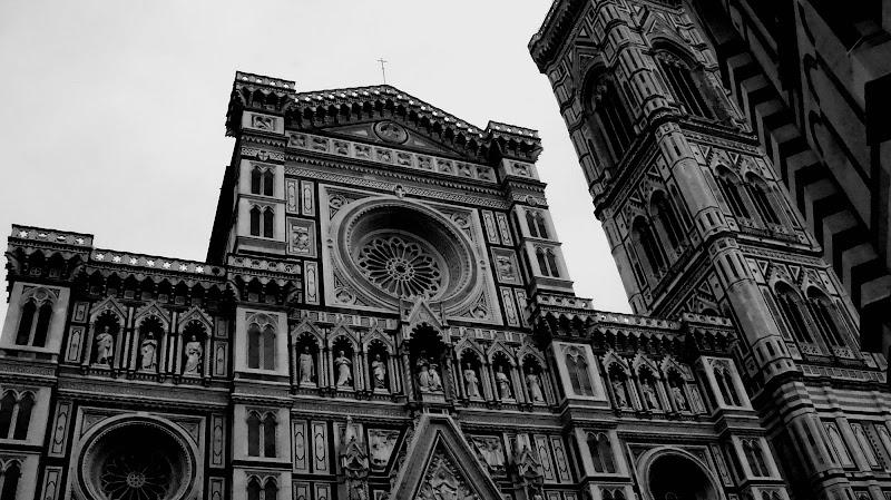 Il rinascimento ITALIANO di Elisabetta Di Franco