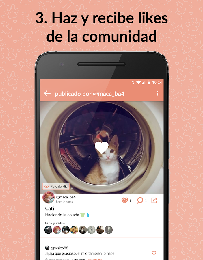 ExpertoAnimal 🐶 🐱  tu red animal: captura de pantalla