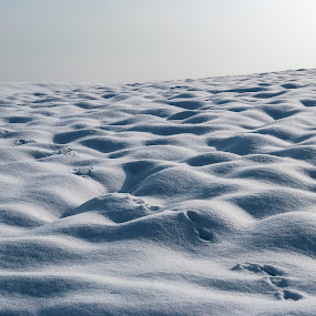 Lost in snow by Tom Mat - Landscapes Weather ( winter, lost, snow, weather, steps )