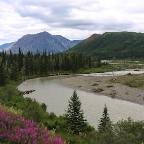 Alaska by Elaine Hill - Landscapes Mountains & Hills ( alaska )