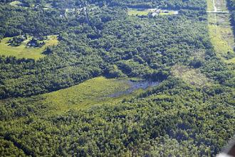 Photo: Cove Brook ecosystem