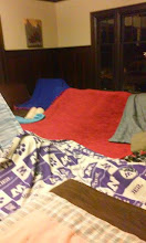 Photo: Blanket fort in the living room
