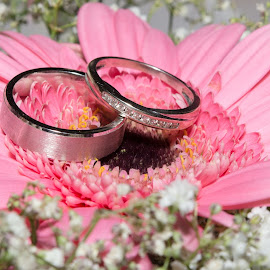 wedding bands on flowers by Sean Kirkhouse - Wedding Details ( detail, wedding, rings, flowers )
