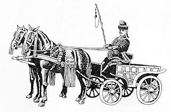 Photo: Woźnica - kocsis (XIX- pocz. XX wieku)