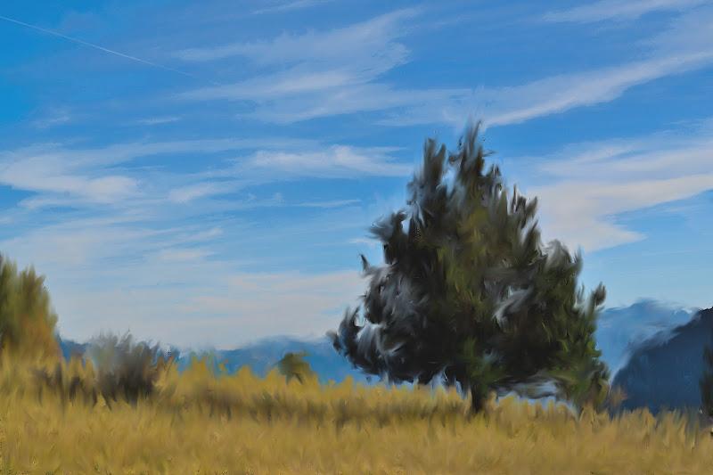 Campo di grano con cipresso (Van Gogh) di FlyBoy