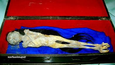 Photo: Kora-kora, Jenglot atau biasa disebut Batara Karang, jenis kelamin betina panjang 40 cm. https://nurkasim49.blogspot.in