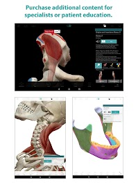 Human Anatomy Atlas Screenshot 15
