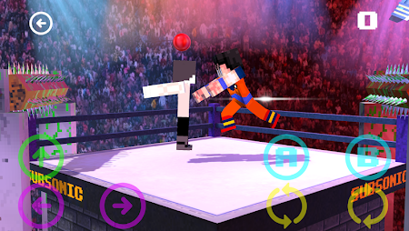 Blocky Wrestle 3D Free Edition 1.1 screenshot 38649