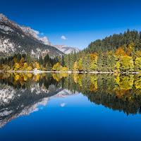 La natura allo specchio di