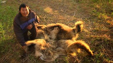 Photo: Dany. Le peuple Inupiaq est chasseur d'ours, caribou, morse et phoque.