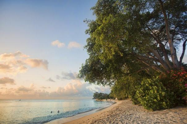 Gibbs Beach, St. Peter, West