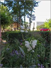 Photo: Lumânărica albă (Verbascum 'Temptress White') - din Turda, Calea Victoriei, Bloc B15, spatiu verde - 2019.07.03
