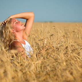 Sunbathing by Bob Grandpre - People Portraits of Women ( field, wheat, woman, harvest, golden, sunbathing, portrait,  )
