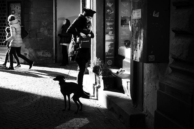 Lungo via Fillungo di FrancescoPaolo
