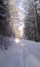 Photo: Wintermärchen 2010 in Hafenlohr