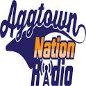 AggTown Nation icon