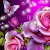 glitter rose wallpaper file APK for Gaming PC/PS3/PS4 Smart TV
