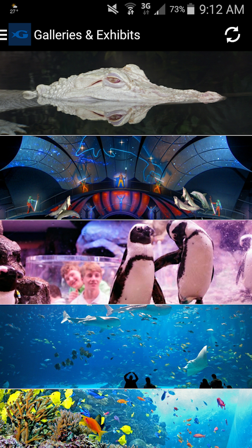 The Georgia Aquarium- screenshot