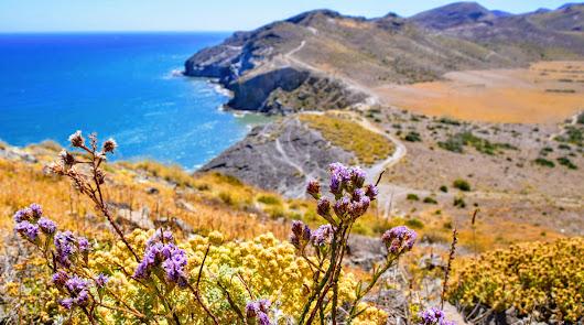 Las rutas que no te puedes perder esta primavera por la provincia de Almería