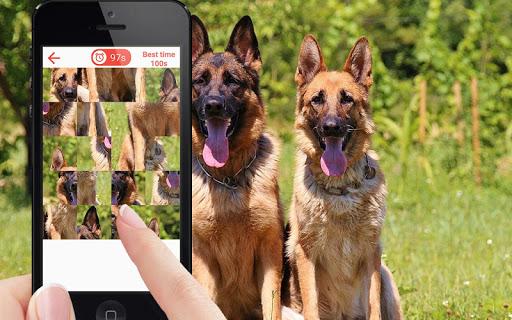 玩免費解謎APP 下載狗的益智遊戲 app不用錢 硬是要APP