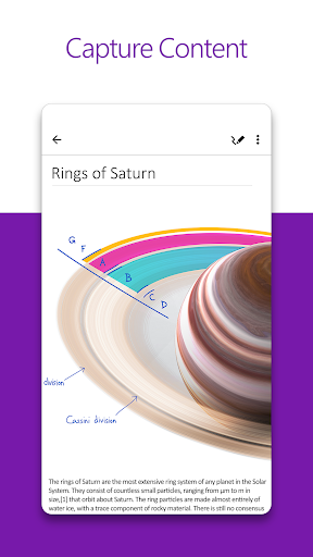 Microsoft OneNote: Save Ideas and Organize Notes screenshot 1