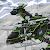 Ninja Velociraptor- Dino Robot file APK for Gaming PC/PS3/PS4 Smart TV