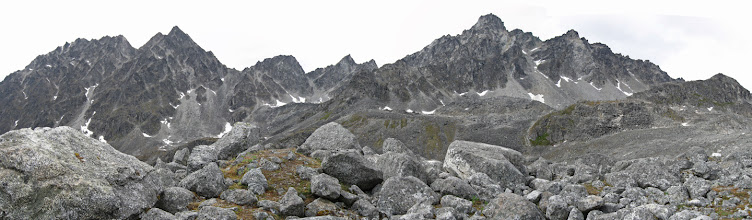 Photo: Terraced moraines & talus field from Mint Glacier
