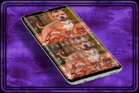 pitbull dog Keyboard Theme - náhled