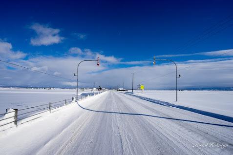明日へ続く白い道