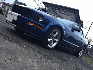 マスタング コンバーチブル  09 GTのカスタム事例画像 PONY-Kさんの2018年11月19日22:17の投稿