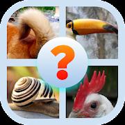 Animal Body Parts Quiz Game